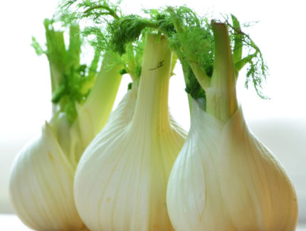 Fennel – A Flavour Sensation